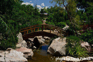 Arched wooden bridge over top of narrow koi pond with big rocks on both sides, decorative garden bridges, backyard garden decor.