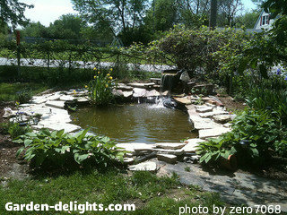 Building a Backyard Pond-Design,Size,Pond Building-Garden ...