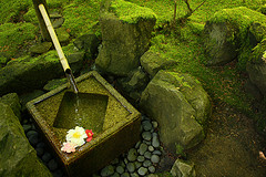 Bamboo reed pouring water into a green moss filled top basin, garden water features, outdoor feng shui water fountains.