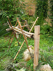 Bamboo Waterspout Coming Out Of Ground Pouring Into Trough With Sticks Crossed Holding Up Waterflow