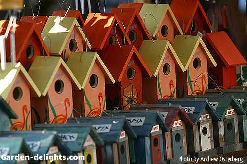 Whole row of fancy wooden bird houses painted different colors, yellow, orange, green, white with some that have small doors on the front and pink flamingos painted on the front that will bring life and charm to your backyard garden with winged activity from a different variety of birds, bird feeders houses, bird houses Google, Yahoo, rustic wooden birdhouse, birdhouse ideas, creative birdhouses, colorful birdhouses, artistic birdhouses, favored birdhouses for your garden, adding bird houses and feeders to your backyard, patio, garden is an easy way to attract motion and natural life to your outdoor living area.