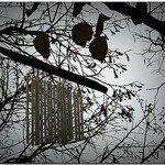 Feng shui wind chimes, wind chimes