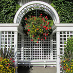 Garden arbors, metal arbors, wooden arbors, vinyl arbors, garden arbors with benches, entrance arbor.