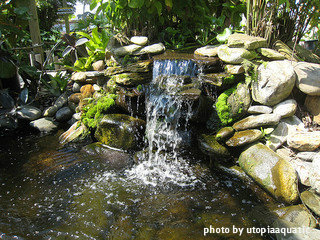 Water gardens pumps selecting right size features for the for Ornamental pond waterfall