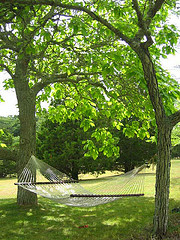 Hammock hanging between two trees,Hanging Hammocks,rope hammocks.