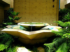 Large two-tier star shaped water fountain surrounded by ferns, interior water fountains, decorative interior water fountains.