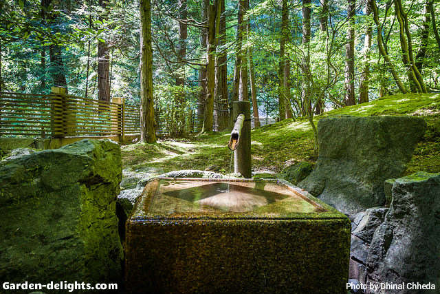 High Quality Japanese Water Feature Inside The Little Valley Surrounded By Trees Along A  Fence With Bamboo Reed