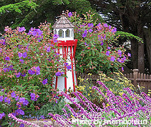 Large white wooden lighthouse with red railings around top beacon with shingle roof, solar powered lighthouses, Amish lighthouses.
