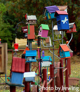 Multiple designs and colored birdhouses on metal poles, homemade craft birdhouses, unique birdhouses.