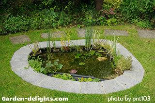 Building a backyard pond design size pond building garden for Design of maturation pond