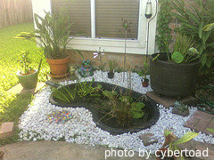 Small preformed/rigid pond kit with white gravel around and plants inside with potted flower plants surrounding. Areformed pond kits, decorative ponds.