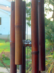 bamboo wind chimes, feng shui wind chimes, bamboo tube wind chimes hanging outside on tree.